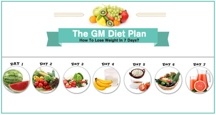 general motors diet plan