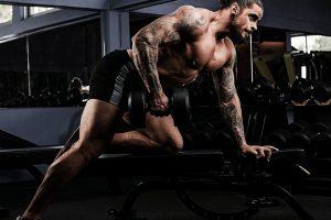 testofuel workout