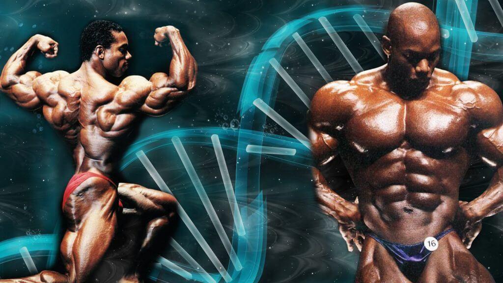 trenbolone bodybuilding