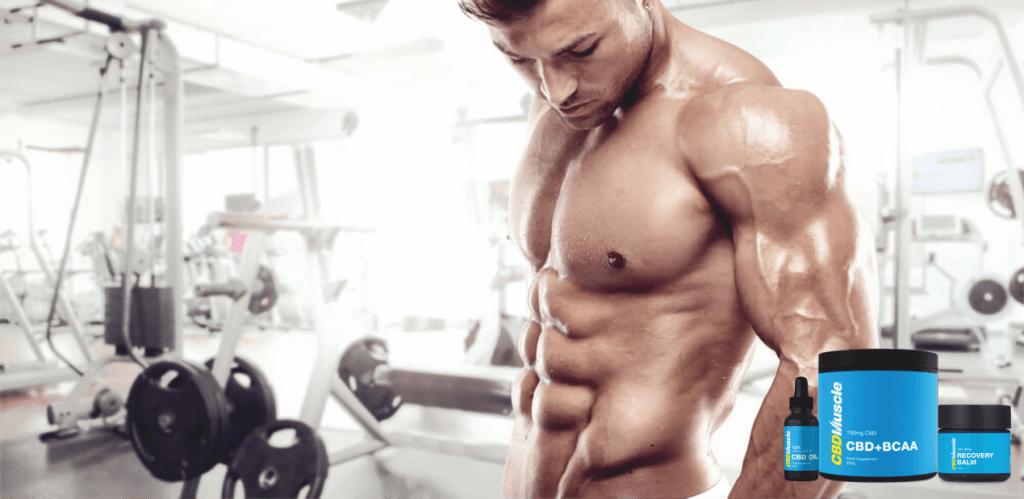 cbdmuscle bodybuilding workout
