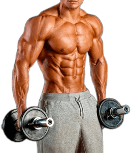turinabol bodybuilding
