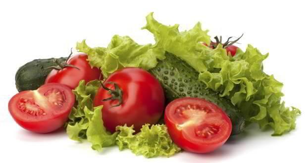 vegan weight loss diet