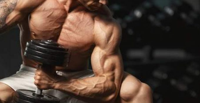 Weight Gainer bodybuilding