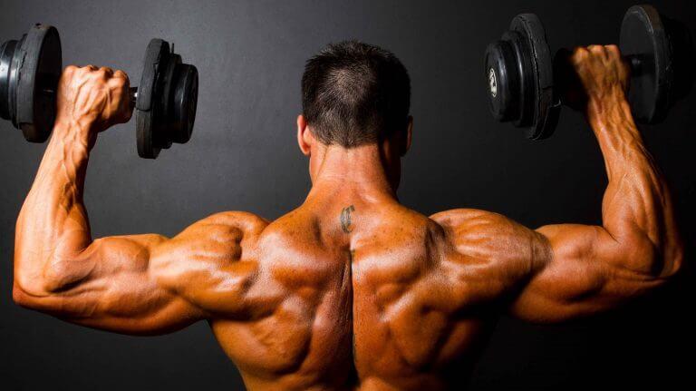 provacyl hgh bodybuilding